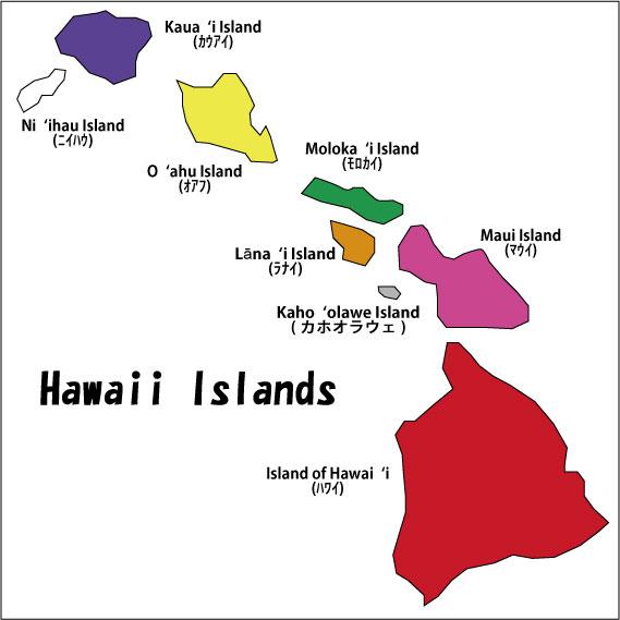 ハワイ諸島の色 オリジナルのハワイアンキルト ... : 黄色 紫 : すべての講義